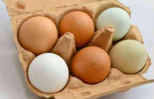 Eier sollten nicht gewaschen werden